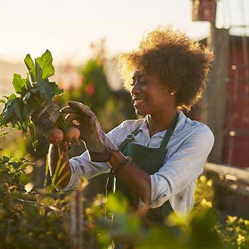 Woman Gardening - 900x600
